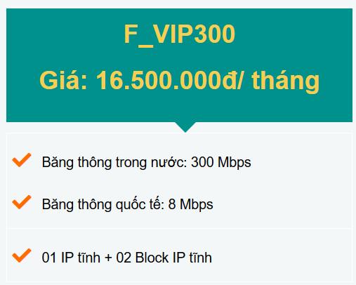 gói F_VIP300 doanh nghiệp